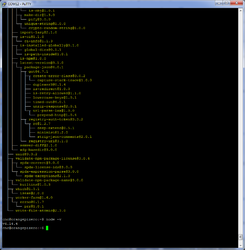 nodejs_install.png